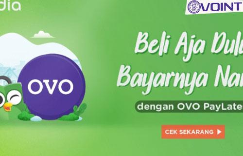 Kapan OVO Paylater Bisa Digunakan Untuk Membeli Barang