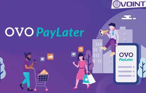 Cara Menaikkan Limit OVO PayLater Terbaru