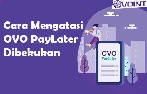Cara Mengatasi OVO PayLater Dibekukan