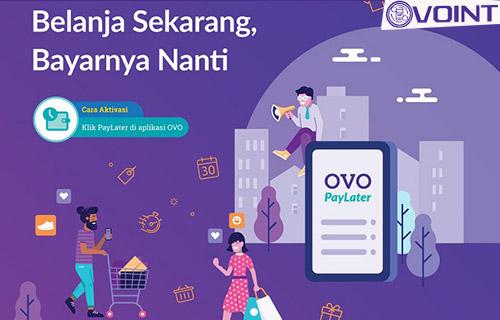 Cara Mengatasi OVO Paylater Tidak Bisa Digunakan