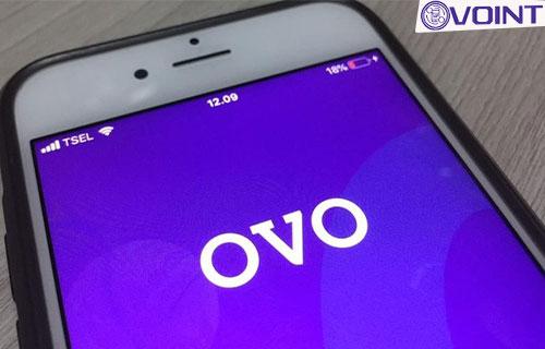 Bagaimana Jika Tidak Bisa Ganti Nama OVO