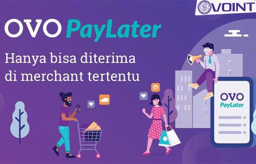 Daftar Merchant OVO Paylater