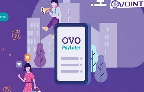 Merchant OVO Paylater