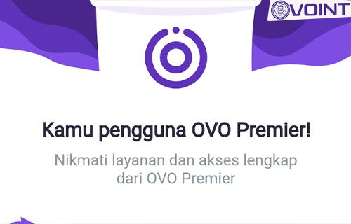 Apa Itu OVO Premier