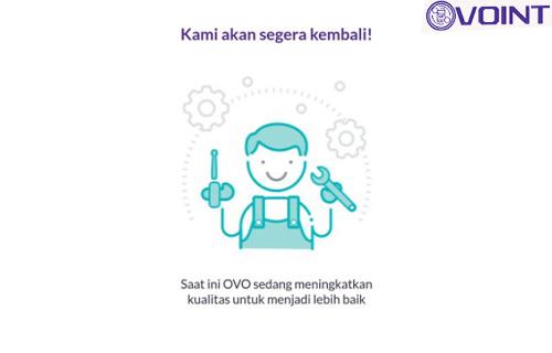 Penyebab Gagal Transfer OVO