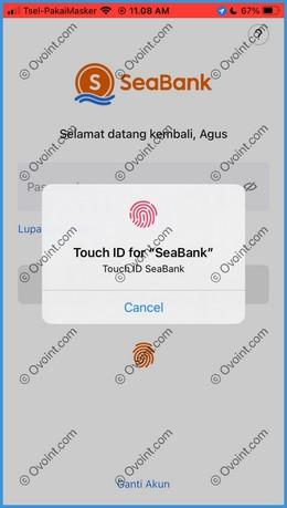 2 Masukkan Password SeaBank