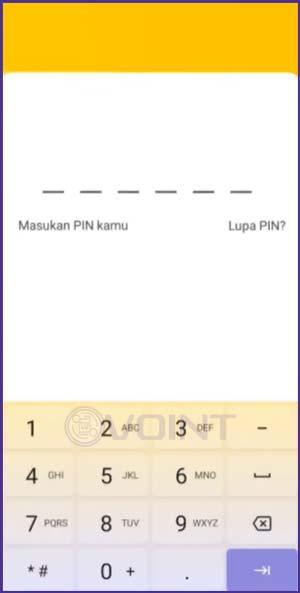 12 Masukkan PIN Neo Bank
